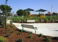 Mulcahy Park