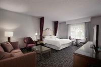 Premium Castle Room King Bed