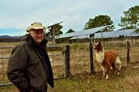 Local Farmer with his 50 kW Solar and Alapacas