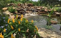Koi Pond, Play Yard and Landscape Installation Bella Montagna Lakeway