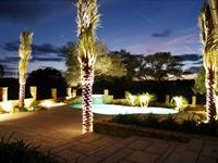 Landscape Lighting, Design and Installation in Escondido Horseshoe Bay