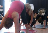 Returning to downward facing dog