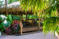 Enjoy breakfast under the tiki each morning 9-11am