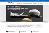 Northstar IOP responsive website