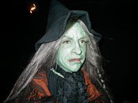 "Stereotypical Witch -  from exhibit ""WItches:Evolving Perceptions"""