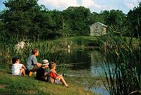 Enjoy fishing ponds, hike & bike trails, and McKinney Roughs located next door.