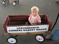 Market Wagons are a fun way to tour the market with your MOM