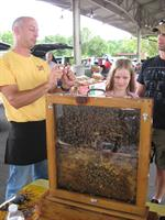 Learning about the importance of bees is part of The Market experience