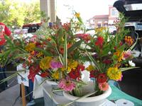 Fresh cut bouquets are always avaiable on Saturdays and Wednesdays