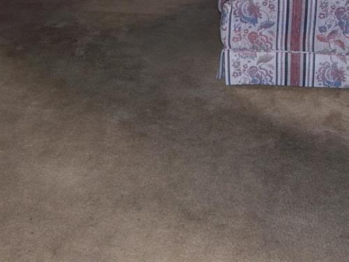 Carpet - dirty - BEFORE