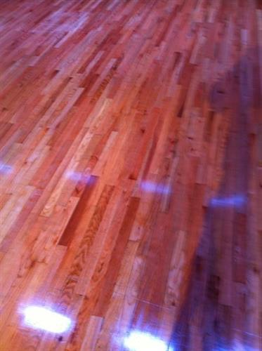 Wood Floor - sand and poly - AFTER