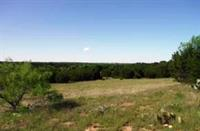 4301 FM 1113 COPPERAS COVE TX  52+/- ACRE RANCH JUST 8 MILES OUT OF COPPERAS COVE JUST SOUTH OF TOPSEY $313,140
