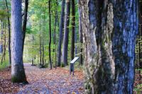 Enjoy our award-winning trail through Victory Woods