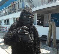 Just monkeying around aboard the Mount!