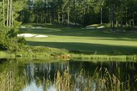 """#16 """"Double Tee"""" at LWGC"""