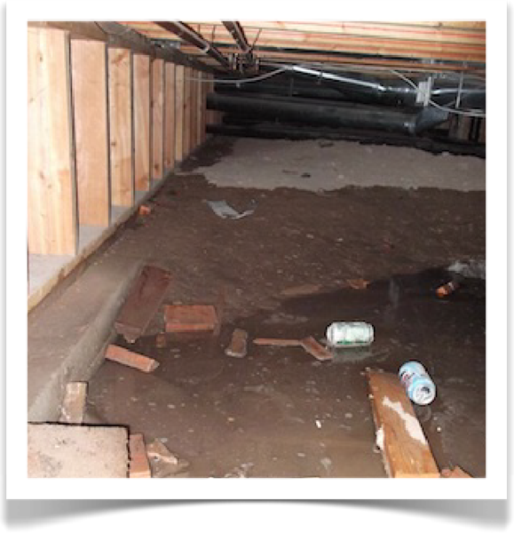 Crawl Space Musty Odor  and Moisture Intrusion Repairs