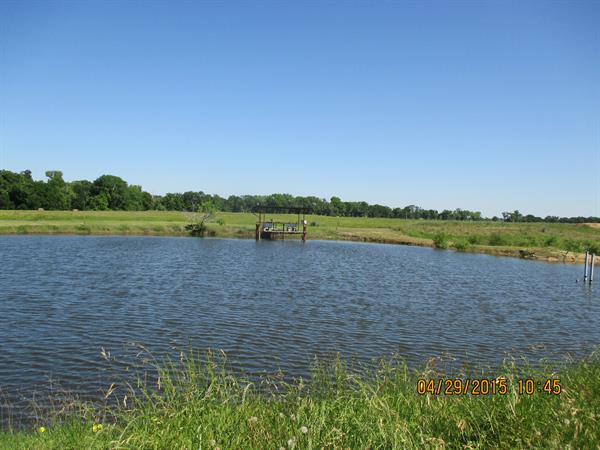 Bring your polls and enjoy our Fishing ponds