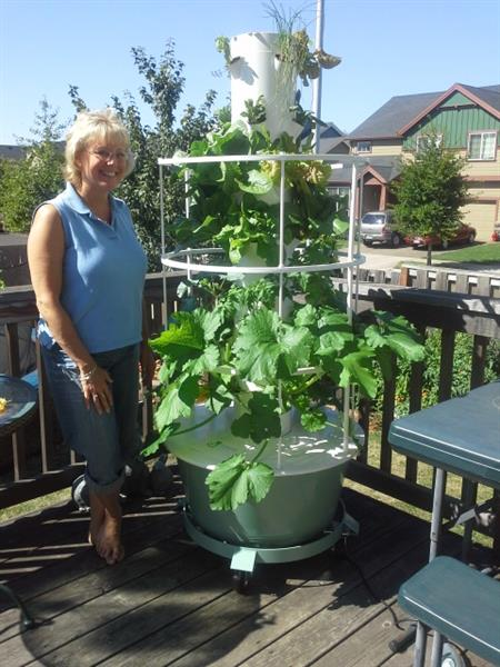 This is me next to my tower -  this is at day 17, after putting my seedling plants in the tower.  Aug 2013