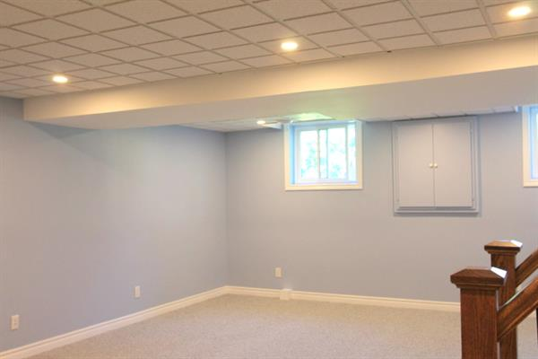 Rec room - New insulation, drywall, drop ceiling, LED pot-lights and carpet