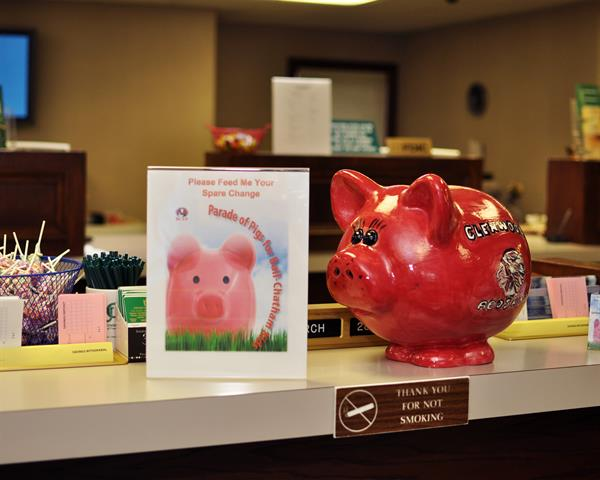 Parade of Pigs for Ball-Chatham Kids Piggy Bank