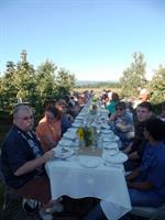 Dinner in the orchard.