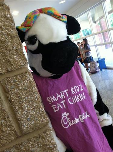 The baby cow loves visiting the schools for Spirit Nights. Cal or stop in today to arrange your Spirit Night Fundraiser.