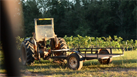 Gallery Image hab-wine-tractor.png