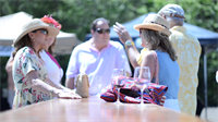 The Annual WineFest happens the first Saturday in May.