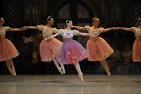 Coppelia photo by by Erik Tomasson