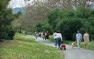 Happy Trails = Los Gatos Trails