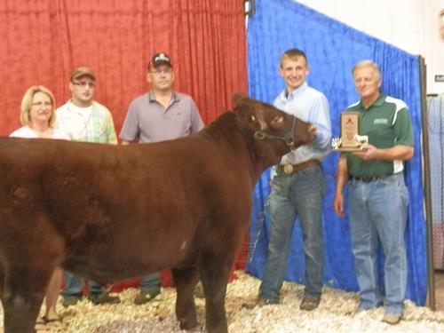 Beef Expo 2014