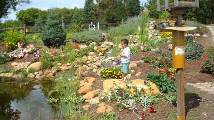 Northland Arb Pond Garden
