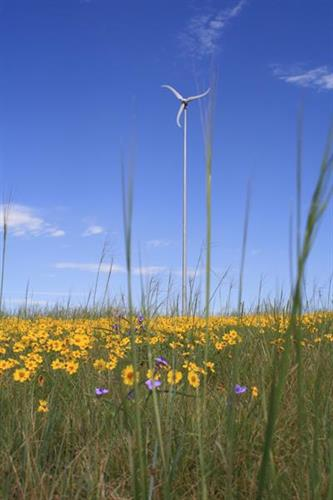 Recording studio powered by renewable energy (the wind) from our Skystream 3.7 wind turbine