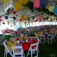 Mad Hatters Tea Party 2011