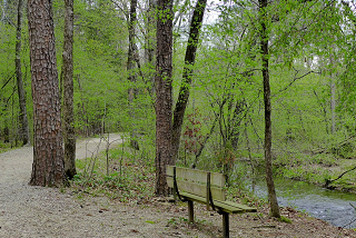 Cedar Creek Trail in Hot Springs Village
