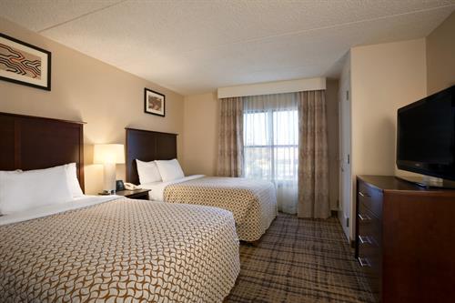 Double Bedded Sutie Bedroom