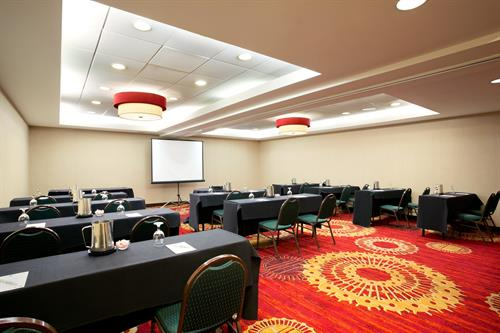 Palm Meeting Room