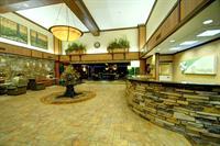 Our luxurious lobby