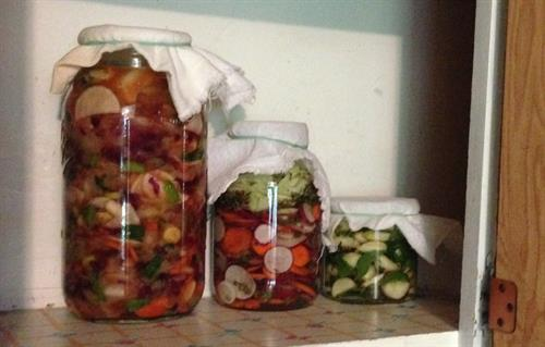 Fermented Kimchi, Radish & Garlic