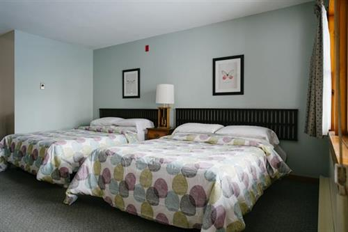 Newly Updated Standard Guest Room, 2 Double Beds