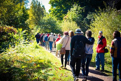 Applefest guided hike.