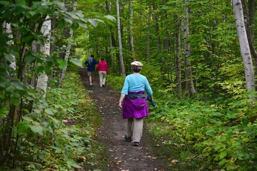 Brownstone Trail
