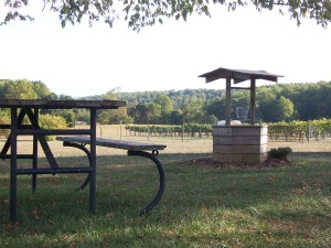 Picnic Area at Hickory Hill