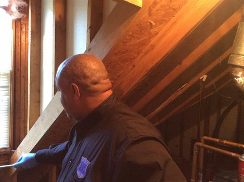 Inspection starts in the attic
