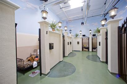 The Barkley Pet Hotel & Day Spa-Barkley Park Suites