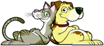 Yappy Days Pet Boarding & Daycare