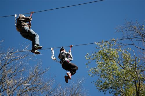600' Zip Line - Adventure Challenge Ropes Course