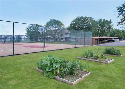 Community Garden/Fitness Court