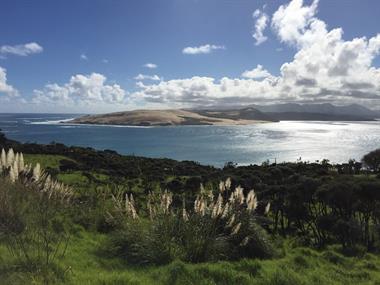 New Zealand North Shore