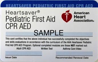 EMSA Pediatric First-aid - 8 hours